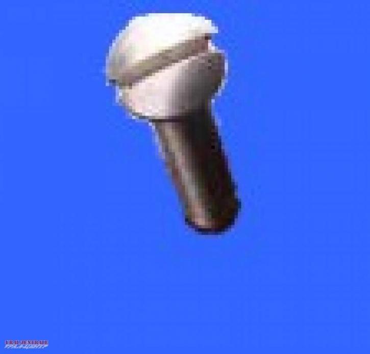 Ventildeckelschraube M72 / K750 aus nichtrostendem Stahl