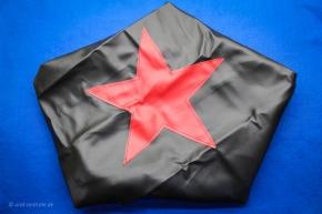 Plane spare wheel red star